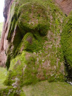 Plaidipus mound: totally random heidelberg
