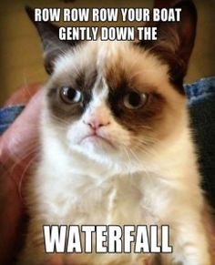 grumpy cat meme..... wish some people would do this ;)