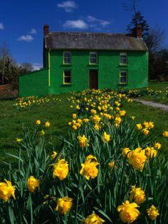 Crookstown, County Cork, Ireland