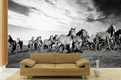52a1301b01ea0d99a86cd80178cee423 9 Impressive Horse Wall Murals