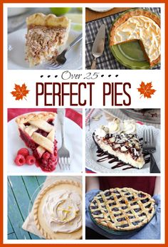 Perfect Pie Recipes - Over 25 perfect pie recipes to make for your next dinner party or holiday event! From blueberry pie and pumpkin pie to chocolate pecan pie and more!