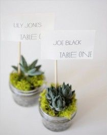Favours and table number idea in one! Weddbook ♥ DIY Mini Succulent Table Numbers. Unique wedding table number #craft #diy   Weddbook ♥