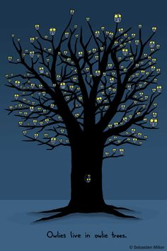 Owlies Live in Owlie Trees