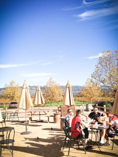 Napa Valley must: Not a winery, but take a bottle of wine you tasted and purchased, buy salad/sandwiches at the Oakville Grocery and picnic there next to the Opus One vineyard.