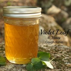 Violet Leaf & Honey Cough Syrup
