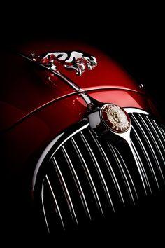 Jaguar classic-car
