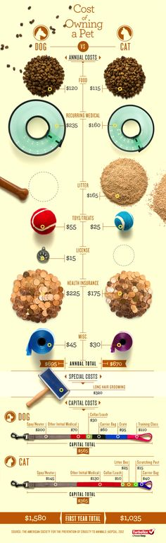 Which is Cheaper: Cats or Dogs? (Infographic)
