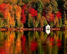 Autumn in the Northeast...I got to experience 4 years of it and I want it back!