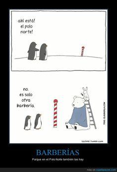 En el Polo Norte... (objeto directo) (la geografía) Visit http://www.estudiafeliz.com for more fun materials for Spanish teachers and students!