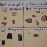 """Teaching With """"Big Red Barn"""" What do we get from farm animals activity