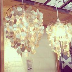 Gorgeous capiz shell chandelier