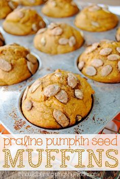 Praline Pumpkin Seed Muffins Recipe | Perfect freezer-friendly fall muffins with lovely pumpkin seed texture!