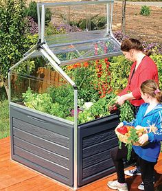 Snap N Grow Greenhouse