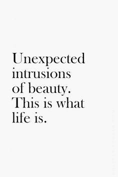 unexpected intrusions of beauty