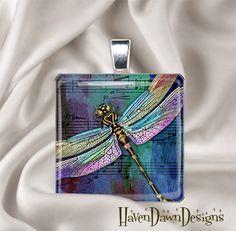 Dragonflies!!!