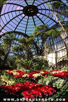 Botanical Garden at Balboa Park