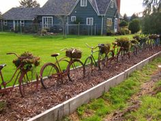 bike fence - garden art / garden junk - this would look beautiful with colorful flowers planted in the bike baskets! colorful flowers, bike fenc, color flower, flower plant, bicycl, flower baskets, bike basket, front yards, garden