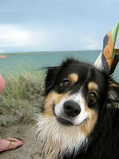 I would smile too if I was at the beach! : )