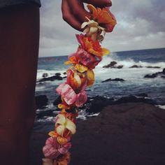 ∆ ∆ North Hawai'i∆ ∆