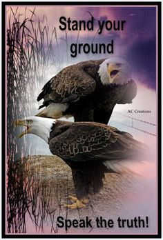 We the People need to encourage the statesmen who are speaking truth and standing fast.  When you let the Government have control..more than provided for in the constitution; then there is a  serious chance of tyranny.