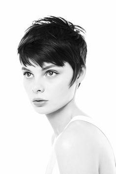 Short hair. Very Audrey.