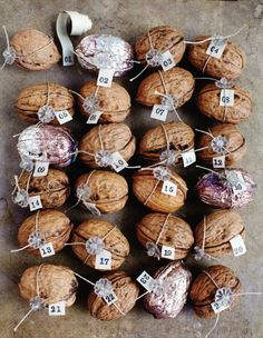 walnut advent calendar - cute idea for the holidays.