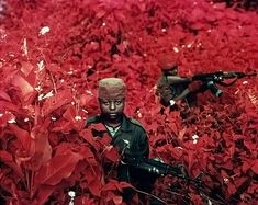 Infrared Warriors, These images were produced with the Kodak Aerochrome infrared film technology once used for military surveillance in past decades. It exposes the scene with lush pinks and empty greys, a contrast that imposes a strange beauty on a sad and unfortunate subject. Richard Mosse