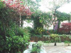 Terrazze arredate con piante on Pinterest