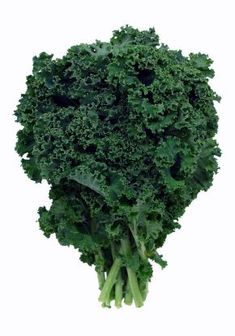 How to Grow Kale: Ka