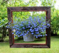 hang plant, ideas for hanging plants, old picture frames, old frames, garden