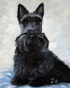 black scottie scottish terrier puppy dog, home decor, wall art, painting, print, pet