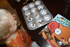Acorn Counting