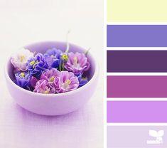 bowled hues bowl hue, color palettes, shades of purple, design seeds, color schemes, paint designs, purple flowers, lemon yellow, neon yellow