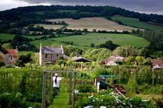 bathford allotments