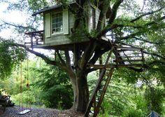Treehouse above San Francisco Bay!
