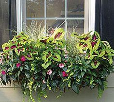 flower window box ideas, side plant, window boxes ideas, shade window, planter box flower ideas, window box planters, shade plants, wall planters