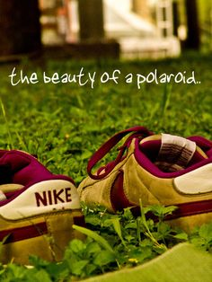 the beauty of a polaroid
