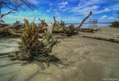 Low Tide St Helena Island Sc