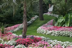 Clarence, NY Lawn Care - Maintenance, Landscaping Designs and More! | The Lawn Master