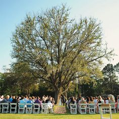 outdoor ceremony, dreams, tree, getting married, brides, backgrounds, folding chairs, summer weddings, outdoor weddings