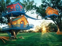 3 tree houses between two trees.