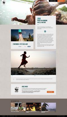 http://40.wwf.fr/fr #webdesign