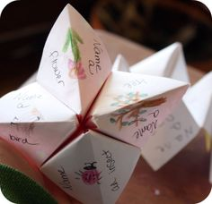 Cootie Catcher nature pin