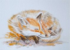 Fox art Original Watercolor Painting red fox sleeping by maryjill