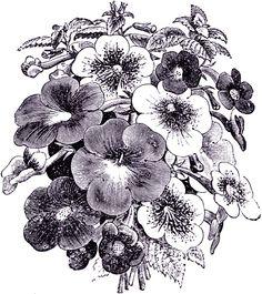 **FREE ViNTaGE DiGiTaL STaMPS**: Free Digital Stamp - Flower Bouquet