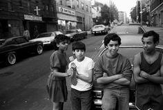Stephen Shames. Bronx Boys