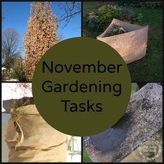 November Gardening Tasks