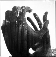 hand, dark forest, photographs, black white photography, camera, art, doubl exposur, florian imgrund, photographi
