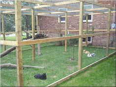Free Outdoor Cat Enclosure Plans | Cats can roam the great outdoors in this spacious enclosure. (Photo ...
