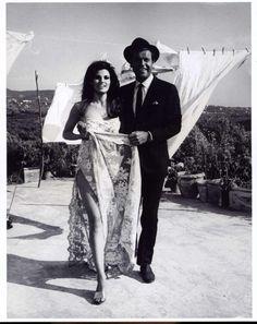 Retro wedding dresses on pinterest for Raquel welch wedding dress